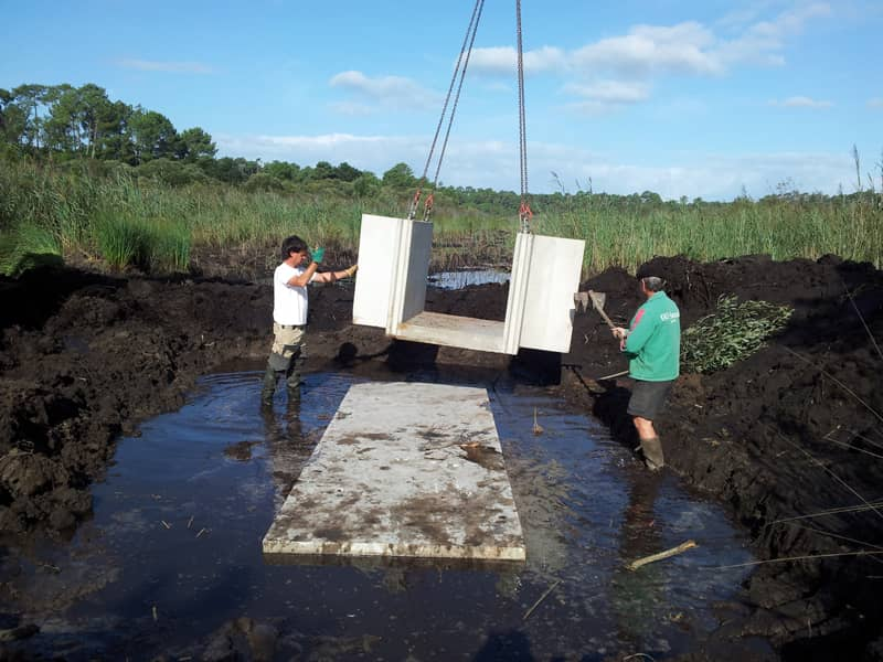 Travaux sur milieux aquatiques