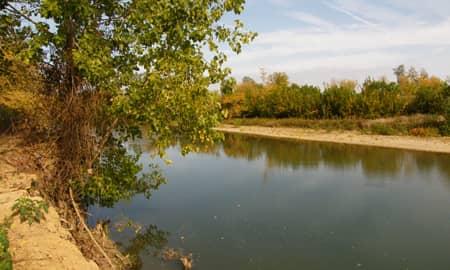 Fleuve Adour amont à Pontonx, bon coin pour la pêche au coup