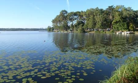 Parcours no-kill black-bass sur l'étang d'Aureilhan