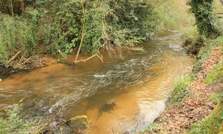 Vue du parcours no-kill truite de Courlis sur le ruisseau d'Onesse