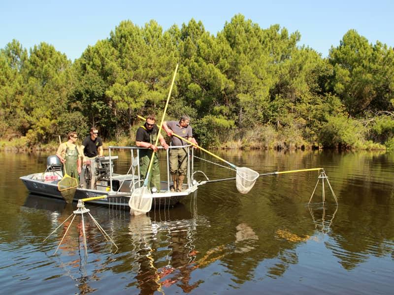 Inventaire piscicole avec bateau de pêche électrique