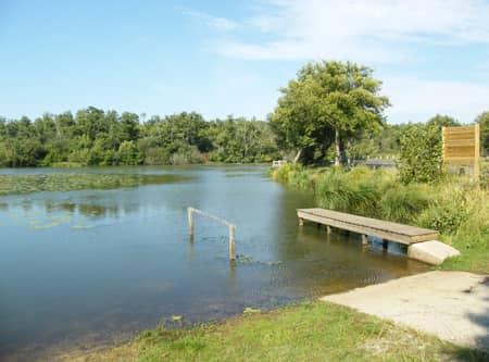 Vue sur l'étang d'Aureilhan