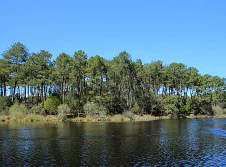 Vue sur l'étang de moliets